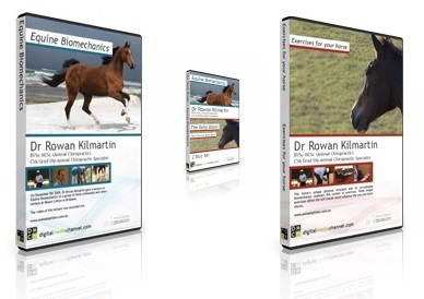 Equine Biomechanics & The Daily Dozen Box Set